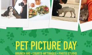 pet-picture-day-aff