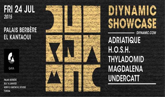 diynamic-showcase