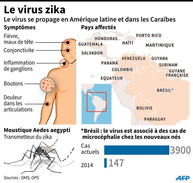virus zika infographie AFP