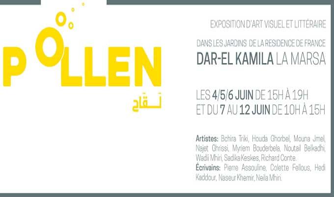 exposition-pollen