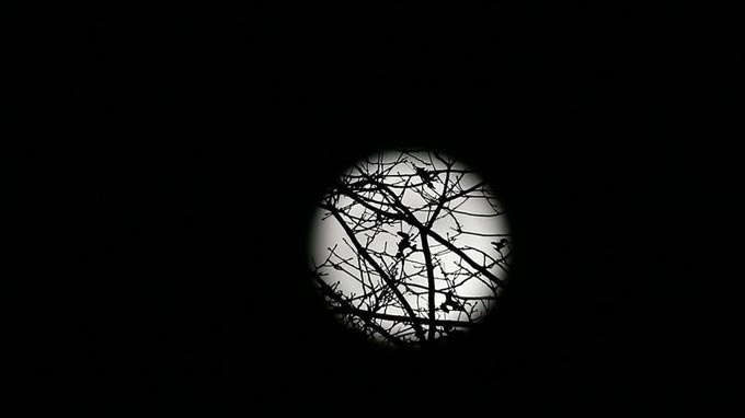 super-lune-paris-2016